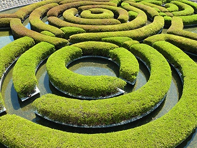The Getty Center Garden